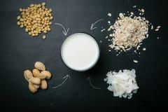 Μη γαλακτοκομική έννοια γάλακτος Στοκ Εικόνες