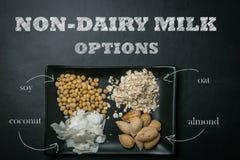 Μη γαλακτοκομική έννοια γάλακτος Στοκ Εικόνα