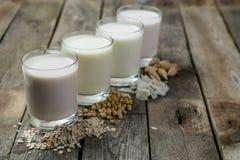 Μη γαλακτοκομική έννοια γάλακτος Στοκ Φωτογραφίες