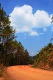 Μη στρωμένος δρόμος με το δασικό και νεφελώδη μπλε ουρανό πεύκων Στοκ Εικόνες