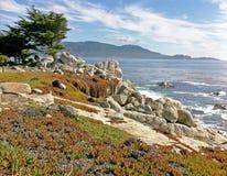 Κόλπος σε Monterey, ασβέστιο Στοκ Εικόνες