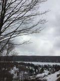 Μια άποψη ενός χιονισμένου γηπέδου του γκολφ με τα σπίτια και τη χιονισμένη λίμνη Στοκ Εικόνες