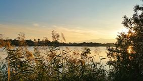 Μια άποψη ηλιοβασιλέματος λιμνών Στοκ εικόνες με δικαίωμα ελεύθερης χρήσης