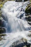 Μια άποψη κινηματογραφήσεων σε πρώτο πλάνο Crabtree εμπίπτει στα μπλε βουνά κορυφογραμμών της Βιρτζίνια, ΗΠΑ Στοκ Εικόνες