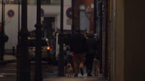 Μια άποψη οδών με την πολυάσχολη κυκλοφορία και ένα ζεύγος που περπατά με τα σκυλιά κατά μήκος ενός πεζοδρομίου απόθεμα βίντεο