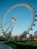 Μια άποψη στη ρόδα ferris ματιών του Λονδίνου από το ιωβηλαίο καλλιεργεί νωρίς το πρωί στοκ φωτογραφία