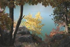 Μια άποψη σχετικά με τη ρόδινη λίμνη Στοκ Εικόνες