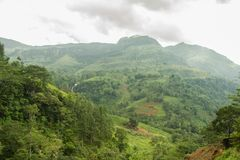 Μια άποψη της κοιλάδας όπως βλέπει από έναν δρόμο σε Nuwara Eliya στοκ φωτογραφία με δικαίωμα ελεύθερης χρήσης