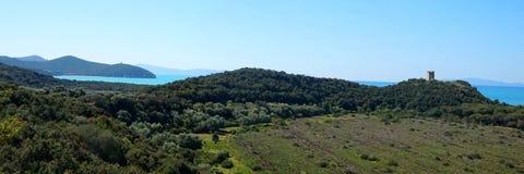 Μια άποψη του πράσινου πάρκου maremma στοκ φωτογραφία με δικαίωμα ελεύθερης χρήσης
