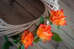 Μια άσπρη άμπελος, που διακοσμείται με τα όμορφα πορτοκαλιά τριαντάφυλλα Στοκ Φωτογραφία
