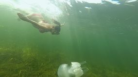 Μια έγκυος εύθυμη νέα γυναίκα κολυμπά και βουτά κάτω από το νερό με μια άσπρη μέδουσα στην ανοικτή θάλασσα φιλμ μικρού μήκους