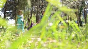 Μια έγκυος μητέρα, πατέρας και η κόρη τους, περίπατος σε ένα πάρκο μεταξύ των πράσινων δέντρων απόθεμα βίντεο