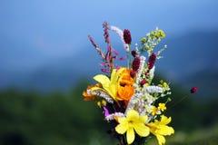 Μια δέσμη των άγριων λουλουδιών Στοκ φωτογραφία με δικαίωμα ελεύθερης χρήσης