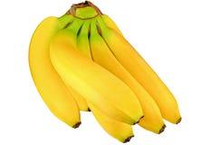Μπανάνες Στοκ Εικόνα