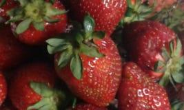 Μια δέσμη των φρέσκων φραουλών Στοκ Εικόνα