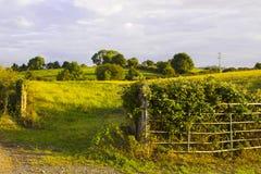 Μια αγροτική πύλη χάλυβα στο νομό κάτω από τη Βόρεια Ιρλανδία Στοκ Εικόνες