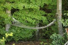 Μια αιώρα μέσα βαθιά - πράσινο δάσος Στοκ Εικόνες