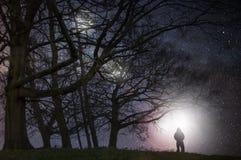 Μια αλλοδαπή νυχτερινή έννοια εκδίδει Ένας απόκοσμος αριθμός που στέκεται στην άκρη της δασώδους περιοχής που εξετάζει τα φω'τα σ στοκ φωτογραφίες με δικαίωμα ελεύθερης χρήσης