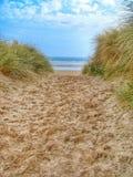 Μια αμμώδης πορεία στην παραλία Στοκ Φωτογραφία