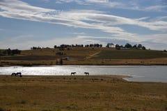 Μια αναλαμπή στην κοιλάδα κυνηγών στοκ εικόνες με δικαίωμα ελεύθερης χρήσης