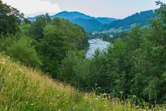Μια ανθίζοντας κλίση, δέντρα και ένας ποταμός με έναν άχρηστο στο υπόβαθρο Και στην απόσταση μπορείτε να δείτε τα βουνά στοκ εικόνες