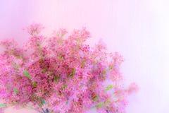 Μια ανθοδέσμη του λεπτοκαμωμένου ρόδινου λουλουδιού με τον πράσινο κλαδίσκο στοκ εικόνες