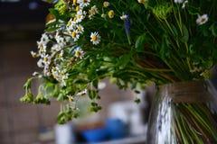 Μια ανθοδέσμη του τομέα chamomiles Στοκ Φωτογραφία