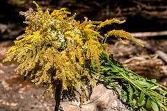 Μια ανθοδέσμη των άγριων λουλουδιών που βρίσκονται σε ένα ξύλινο κολόβωμα στοκ φωτογραφία με δικαίωμα ελεύθερης χρήσης