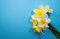 Μια ανθοδέσμη των άσπρων daffodils στοκ εικόνες