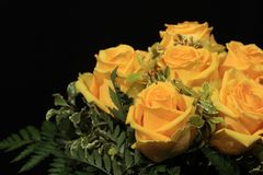 Μια ανθοδέσμη των θαυμάσιων κίτρινων τριαντάφυλλων Στοκ εικόνα με δικαίωμα ελεύθερης χρήσης