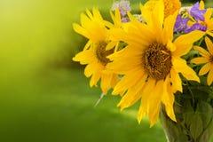Μια ανθοδέσμη των κίτρινων ηλίανθων Στοκ φωτογραφία με δικαίωμα ελεύθερης χρήσης