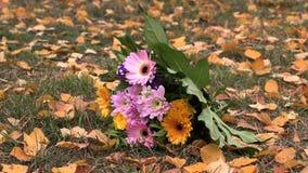 Μια ανθοδέσμη των λουλουδιών βρίσκεται στο κίτρινο φύλλωμα φιλμ μικρού μήκους