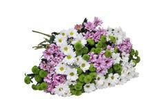 Μια ανθοδέσμη των λουλουδιών σε ένα άσπρο υπόβαθρο Απομονωμένη εικόνα Στοκ φωτογραφία με δικαίωμα ελεύθερης χρήσης