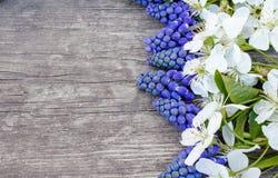 Μια ανθοδέσμη των μπλε κουδουνιών στους παλαιούς, ξύλινους πίνακες, με τα άσπρα λουλούδια του κερασιού, bluebells E στοκ φωτογραφίες με δικαίωμα ελεύθερης χρήσης