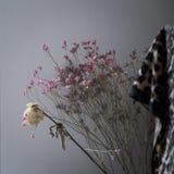 Μια ανθοδέσμη των ξηρών ρόδινων λουλουδιών και άσπρου ενός ξηρού αυξήθηκε ενάντια σε έναν γκρίζο τοίχο, ντεκόρ διαμερισμάτων στοκ εικόνες