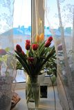 Μια ανθοδέσμη των τουλιπών σε ένα βάζο γυαλιού στοκ φωτογραφία