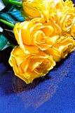 Μια ανθοδέσμη των κίτρινων τριαντάφυλλων με τις πτώσεις σε ένα μπλε υπόβαθρο Στοκ Φωτογραφία