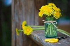 Μια ανθοδέσμη των λουλουδιών πικραλίδων Στοκ Εικόνα