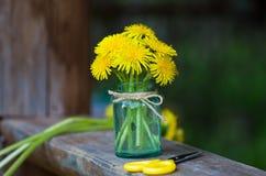 Μια ανθοδέσμη των λουλουδιών πικραλίδων Στοκ εικόνα με δικαίωμα ελεύθερης χρήσης