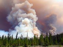 Μια απίστευτη δασική πυρκαγιά στα δύσκολα βουνά Στοκ Εικόνες