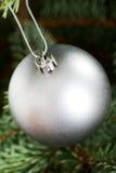 Μια ασημένια σφαίρα Χριστουγέννων που δίνει σε ένα δέντρο. Στοκ εικόνα με δικαίωμα ελεύθερης χρήσης