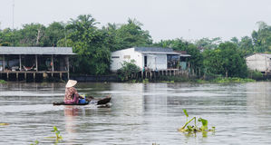 Μια βάρκα κωπηλασίας γυναικών στον ποταμό σε Tien Giang, Βιετνάμ Στοκ Φωτογραφίες