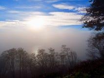 Μια βαριά τράπεζα ομίχλης πλαισιώνεται από το σαφή μπλε ουρανό και μερικά σύννεφα ανωτέρω και τους σκοτεινούς κλάδους δέντρων στο Στοκ φωτογραφία με δικαίωμα ελεύθερης χρήσης