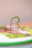 Μια βελόνα με το πράσινο νήμα στοκ εικόνα