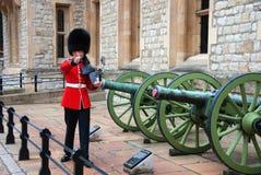 Μια βρετανική βασιλική φρουρά Στοκ εικόνες με δικαίωμα ελεύθερης χρήσης