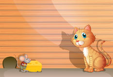 Μια γάτα και ένας αρουραίος Στοκ Εικόνες