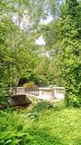 Μια γέφυρα στη φύση σε ένα ειρηνικό πάρκο Στοκ Εικόνες
