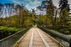 Μια γέφυρα στο δάσος Στοκ φωτογραφίες με δικαίωμα ελεύθερης χρήσης