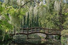 Μια για τους πεζούς ξύλινη γέφυρα στον ιαπωνικό κήπο που βρίσκεται στο καπέλο στοκ εικόνα