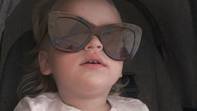 Μια γοητεία marmoset και γυαλιά ηλίου φιλμ μικρού μήκους